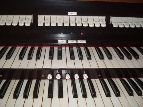 Manuals or keyboards and stops of the pipe organ.